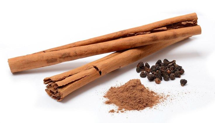 1920px-Cinnamomum_verum_spices